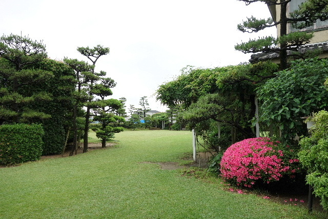 nishiyama0043.jpg