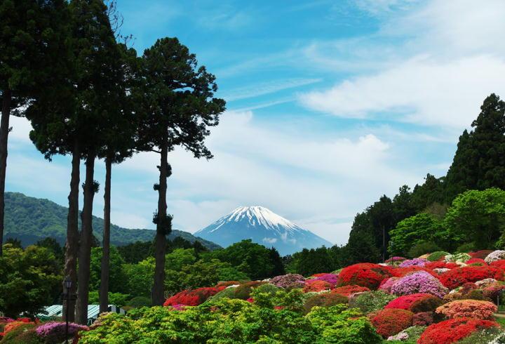 富士山-839