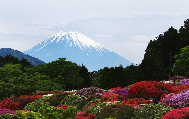 富士山-07-22