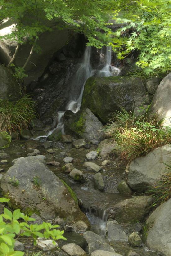 滝-953