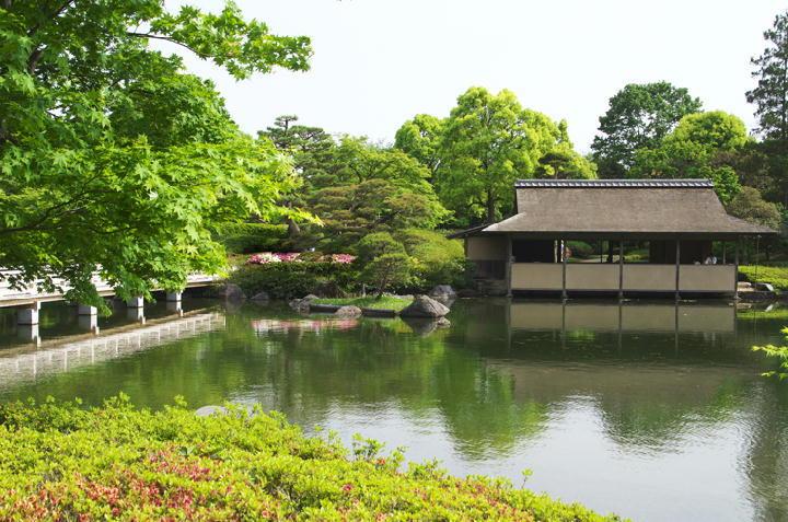 日本庭園-957