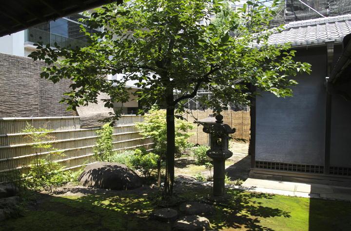 和室の庭-362-1