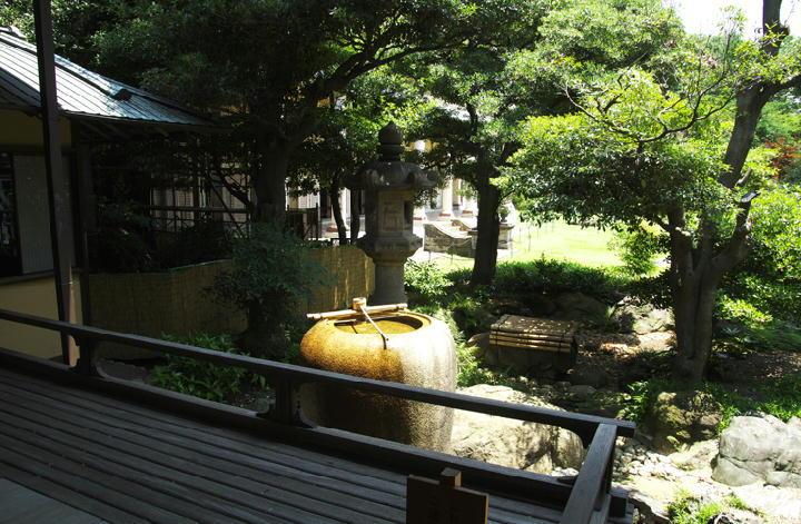 和室の庭-363