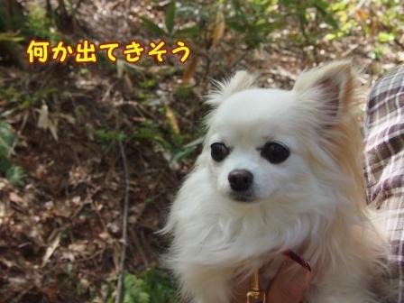 bloga767a.jpg
