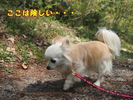 bloga770a.jpg