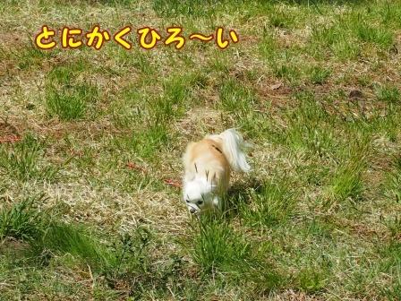 bloga795a.jpg