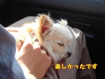 bloga818a.jpg
