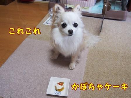 bloga979a.jpg