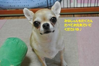 DSC_0117_convert_20180726102808.jpg