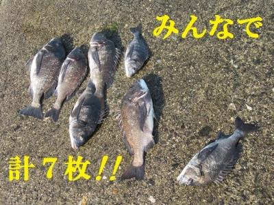 18526IMG_0910.jpg
