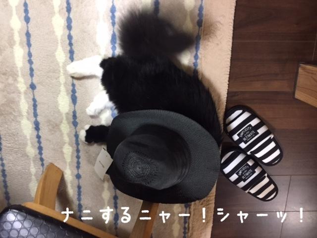 awabitoboushi.jpg