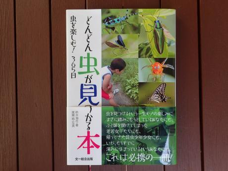 どんどん虫が見つかる本