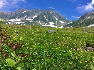 s-今日の雄山と花畑(7・16)
