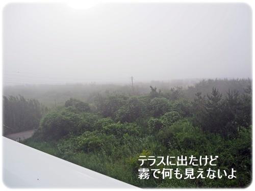 テラスから霧