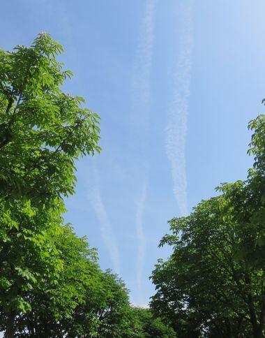 IMG_0994飛行機雲