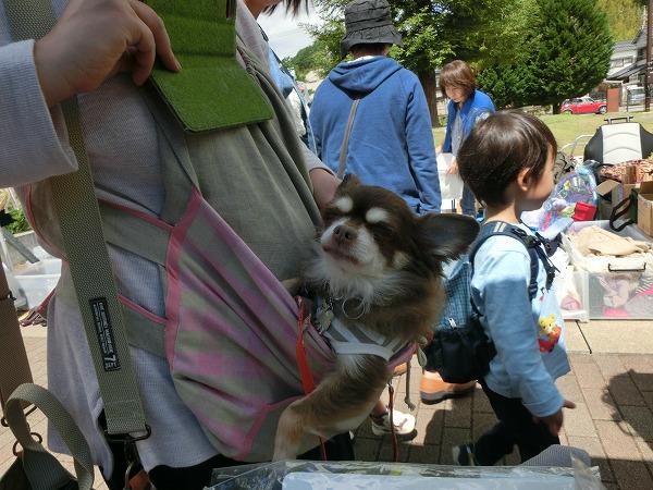 5月20日北神戸バザー 001