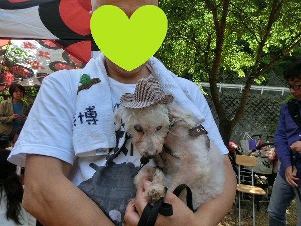 花りんガーデン2018初夏 017