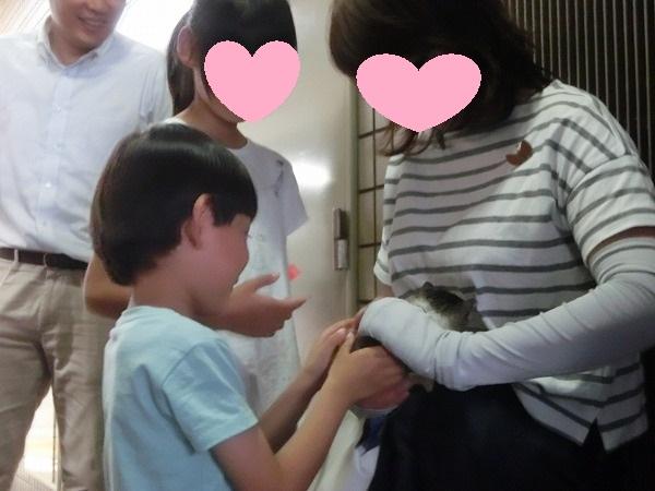 ご支援ありがとうございます!子猫ちゃん第一号卒業 009