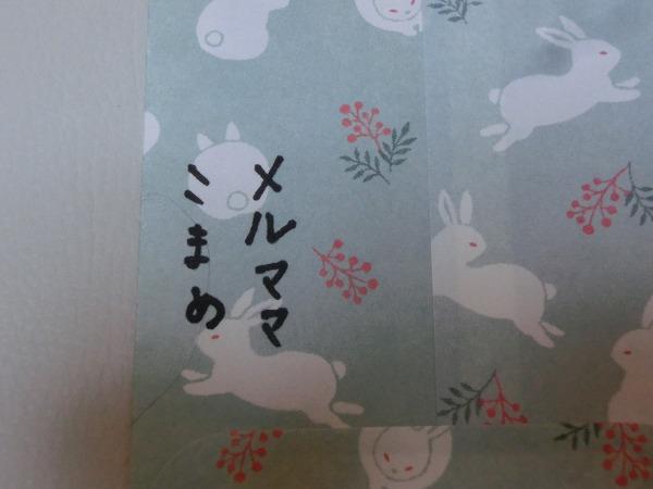ご支援ありがとうございます!子猫ちゃん第一号卒業 013