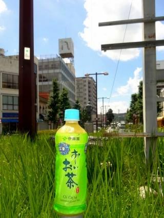 冷凍お~いお茶 (1)