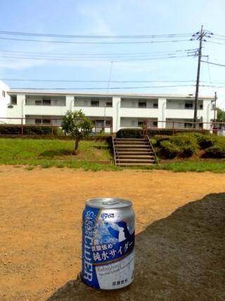 純水サイダー (8)