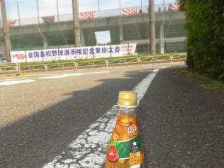 夕張メロン (6)