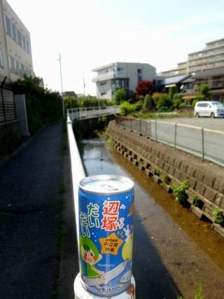 辺塚だいだい (4)