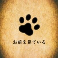 泥龍 (clay7890d)