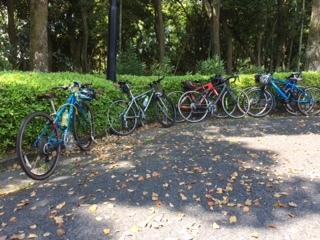 植物公園駐輪場
