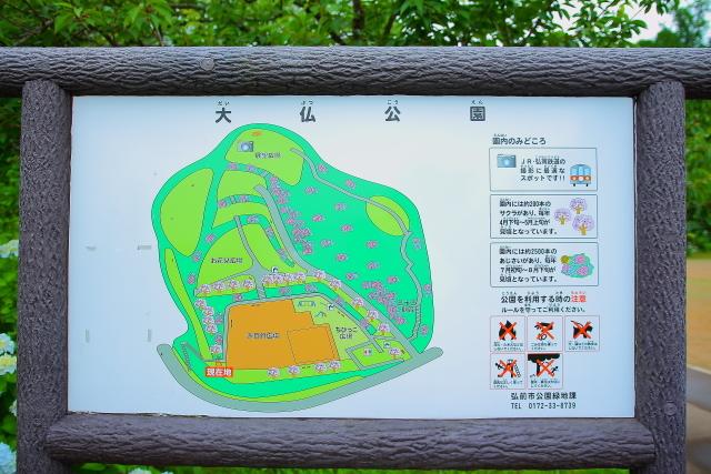 大仏公園1
