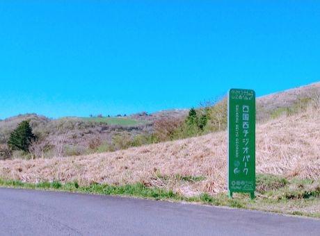 mominoki3.jpg