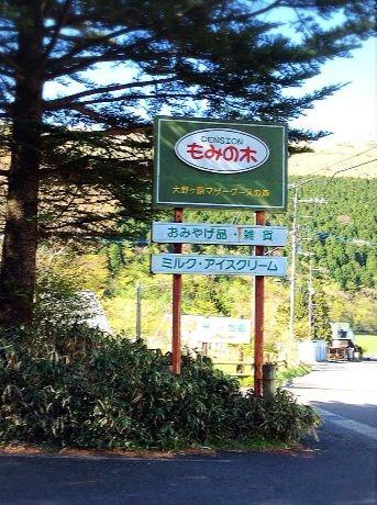 mominoki7.jpg