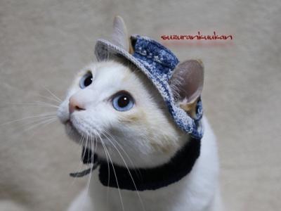 カンカン帽セット<紺系>