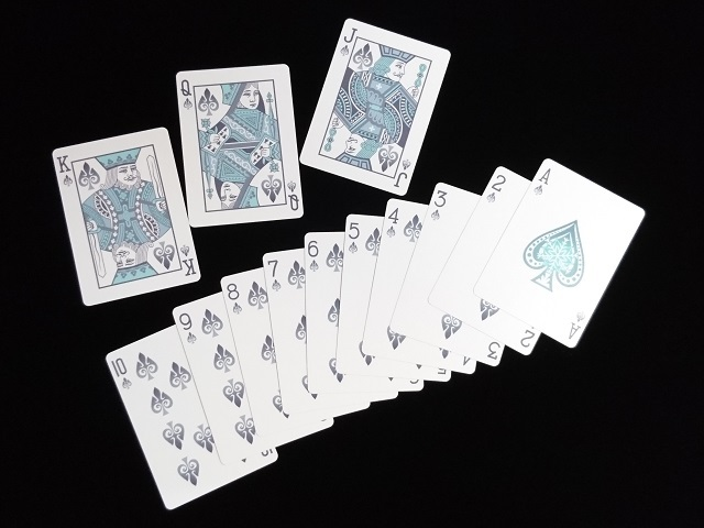 Four Seasons Limited Edition (Winter) Playing Cards (BICYCLE) (6)