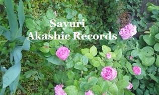 アカシックレコード リーダーさゆり ピンクのバラ♪