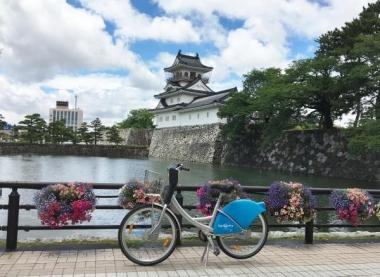 バスケットフラワーと富山城 20180629