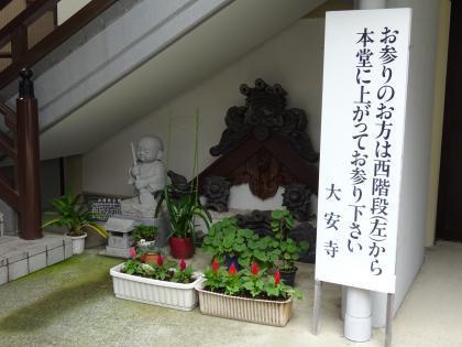 平成30年7月の植木鉢01