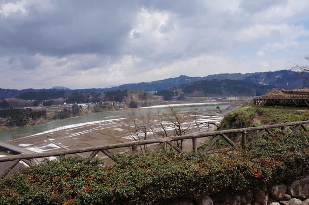 信濃川その2
