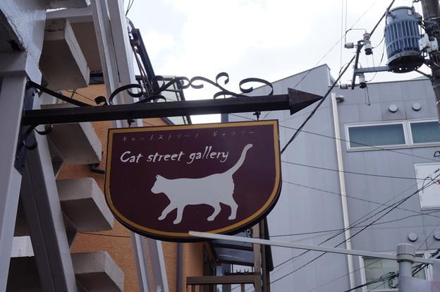 可愛い猫の看板