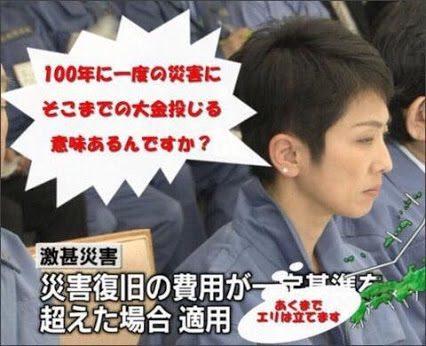 【平成21年~、蓮舫「事業仕分け人」の政策や実績】