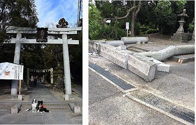 b-torii.jpg
