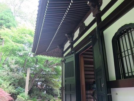 5月鎌倉4