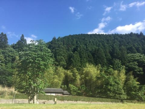 吉野 黒滝