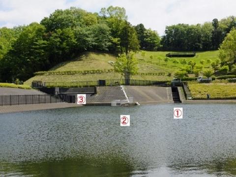 あつぎつつじの丘公園遊水池