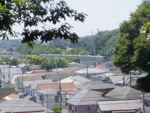相模原台地と横浜線