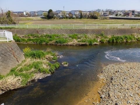蓼川、引地川合流点