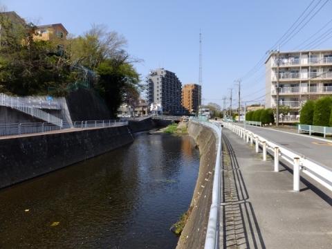 上土棚新橋下流の蓼川