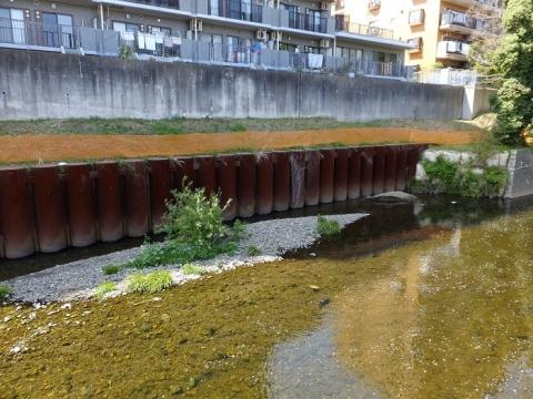 上土棚新橋上流の護岸