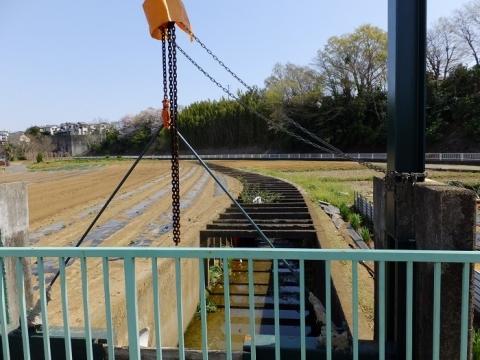 綾瀬市南落合の用排水路