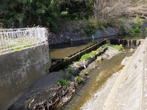 比留川分水路